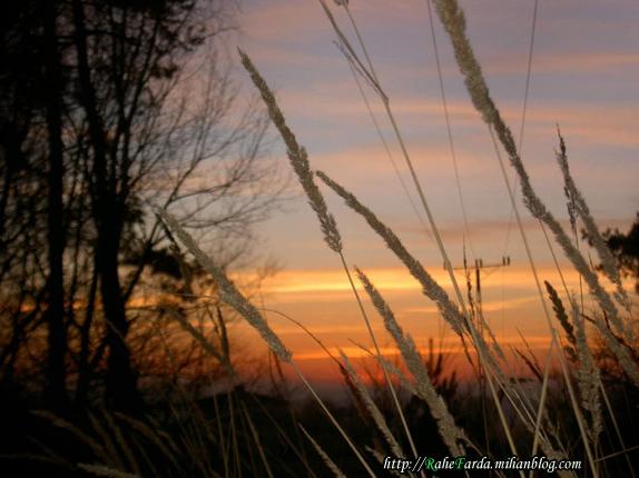 http://rahefarda.persiangig.com/rahefarda.mihanblog.com0093.jpg